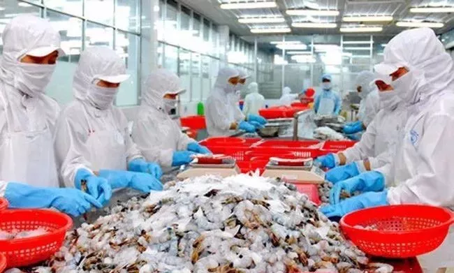 超越美国,2017年中国成越南巴沙鱼和虾类最大出口市场